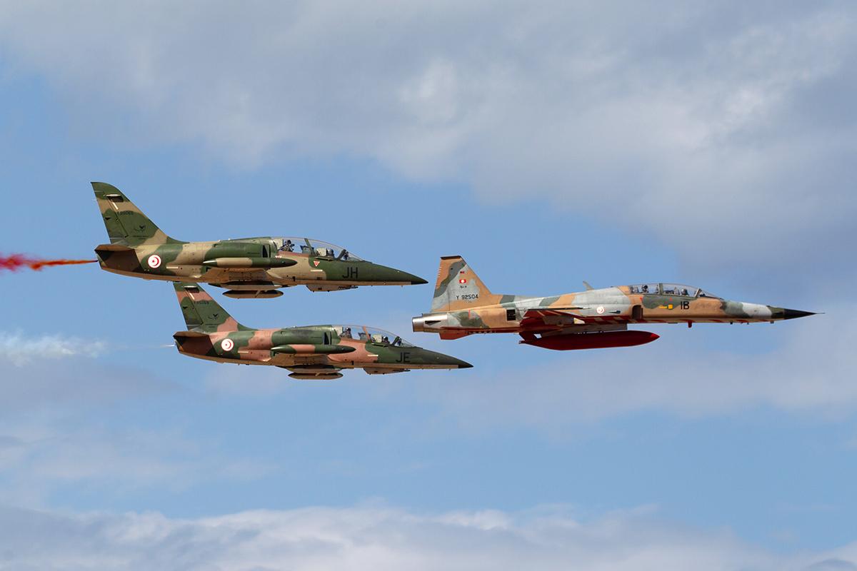 IADE L-59T F-5F 3 Arnold ten Pas